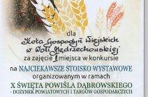 X Święto Powiśla Dąbrowskiego